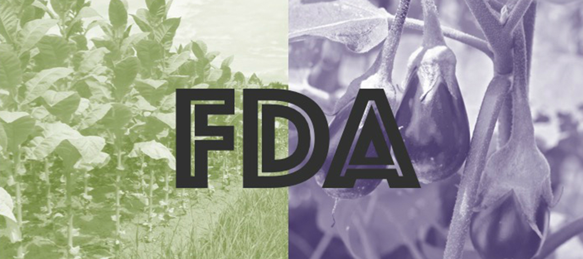 Tobacco vs. Eggplant: FDA Can't Tell the Difference